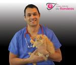 Clinique veterinaire ophtalmologie grenoble isere pour chien chat animaux dr alain cohen boulakia - Cabinet ophtalmologie grenoble ...